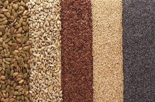 semillas-de-moda